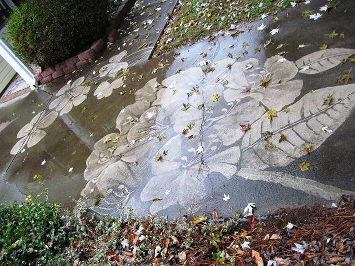 dianna wood pressure washer art neighbor driveway