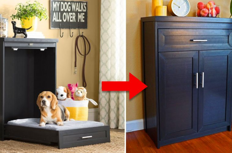 fold-up Murphy dog bed