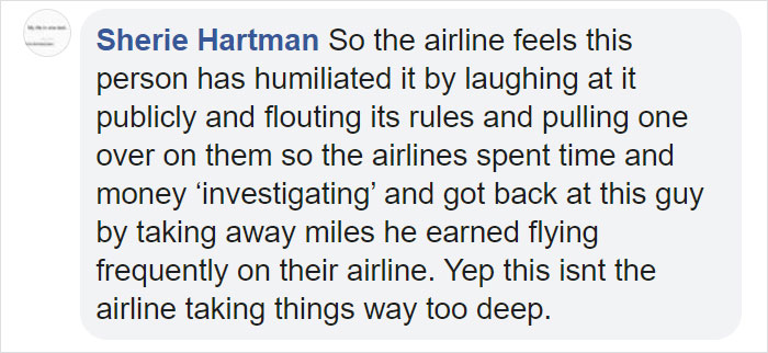 guy sneaks fat cat on flight comment sherie