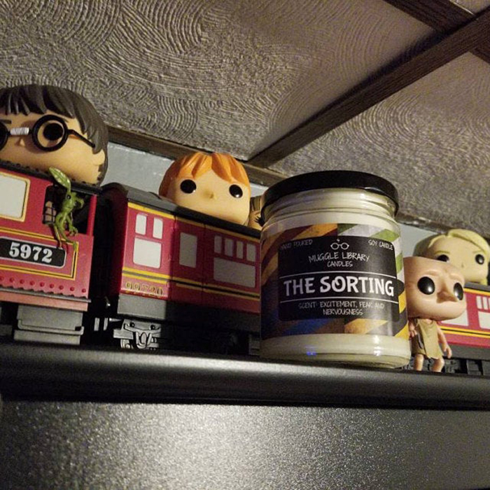 harry potter collection item