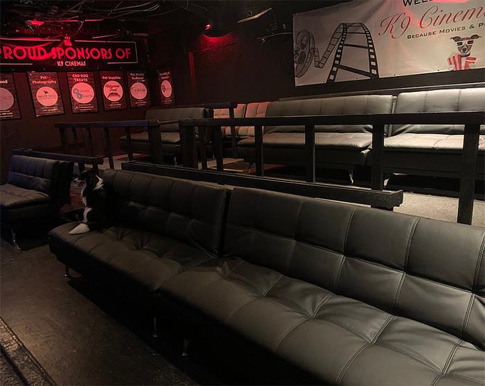 k9 cinemas interior
