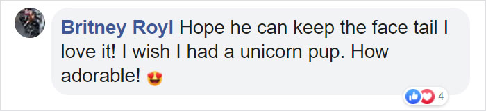 narwhal unicorn puppy comment britney