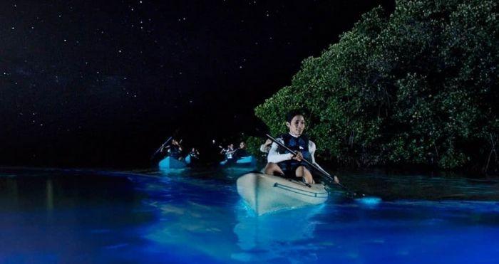 see-through kayaks