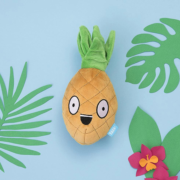 BarkBox 2 in 1 plush pineapple toy