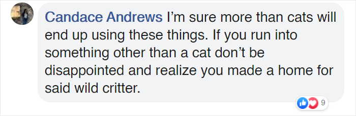 Candace Andrews Facebook Comment about Cat Shelters