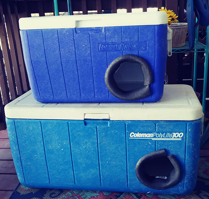Cat Shelters Made Out of Discarded Coolers