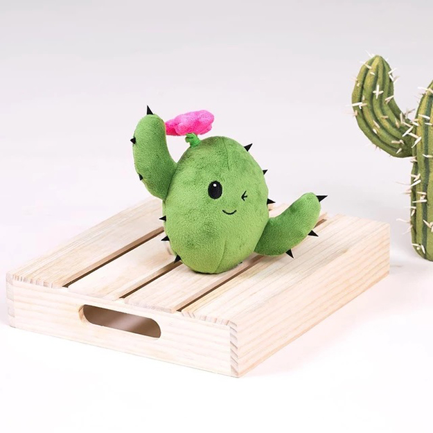 Consuela the Cactus BarkBox 2 in 1 plush toy