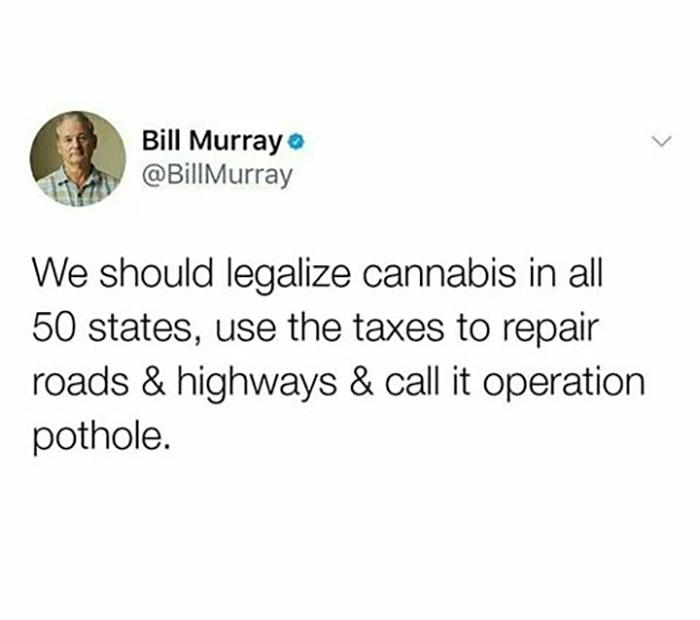 Hilarious Puns Cannabis