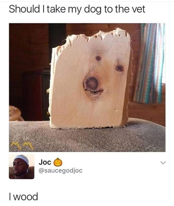 Hilarious Puns Dog Wood
