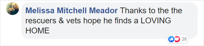 Melissa Mitchell Meador Facebook Comment