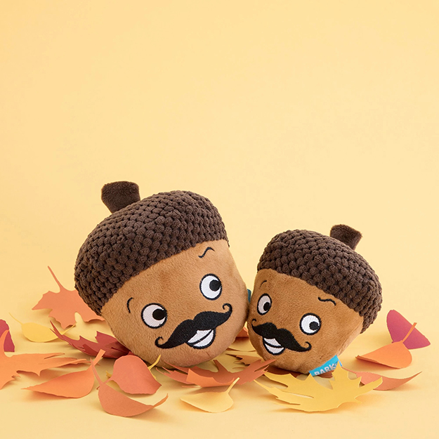 Monsieur Acorn BarkBox 2 in 1 plush toys