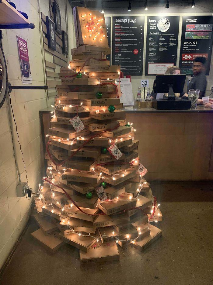 Pizza Box Tree
