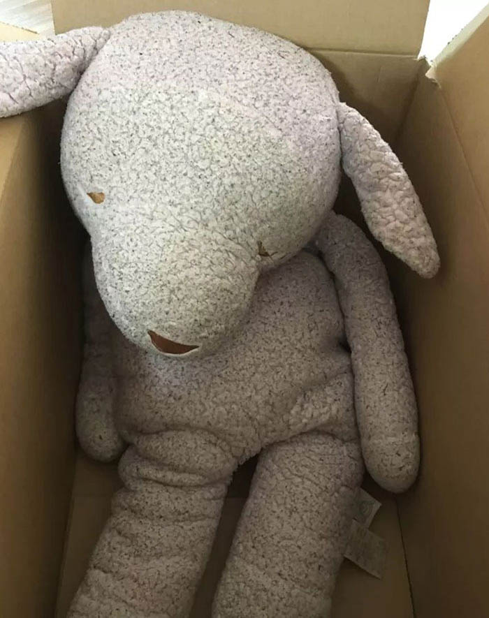 Sad Plush Toy