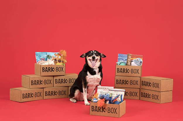 Standard BarkBox 2 in 1 plush toys packages