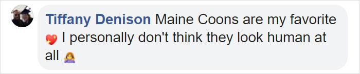 Tiffany Denison Facebook Comment
