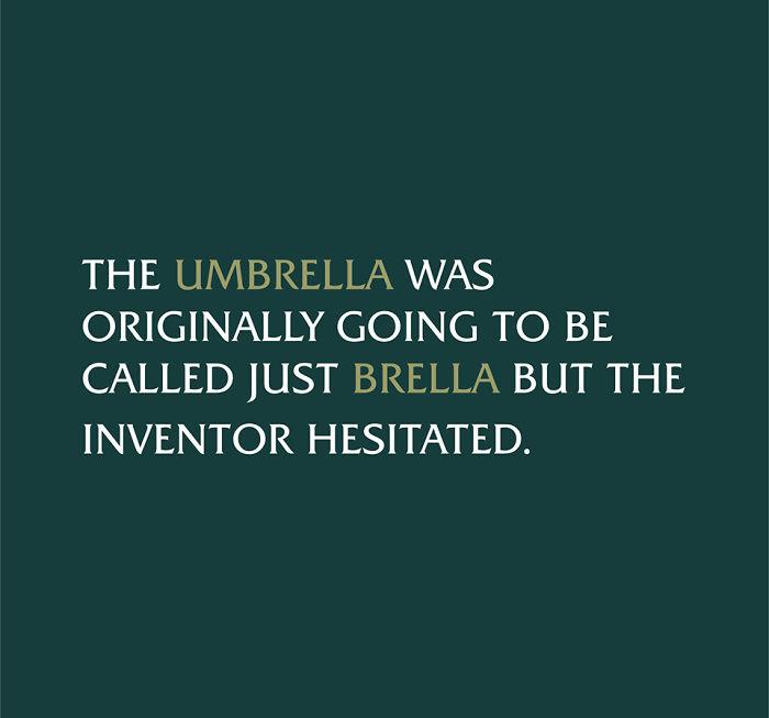 Umbrella Pun