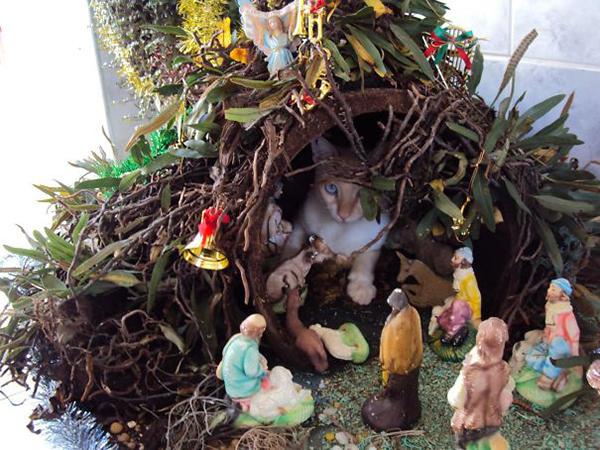 away in the manger