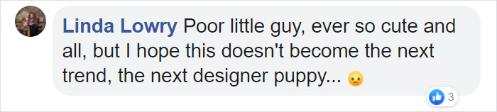 comment about the german shepherd with dwarfism concern