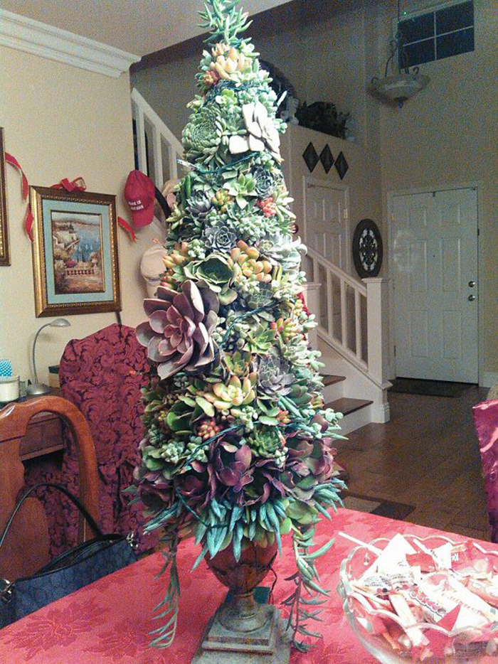 creative christmas tree ideas succulent