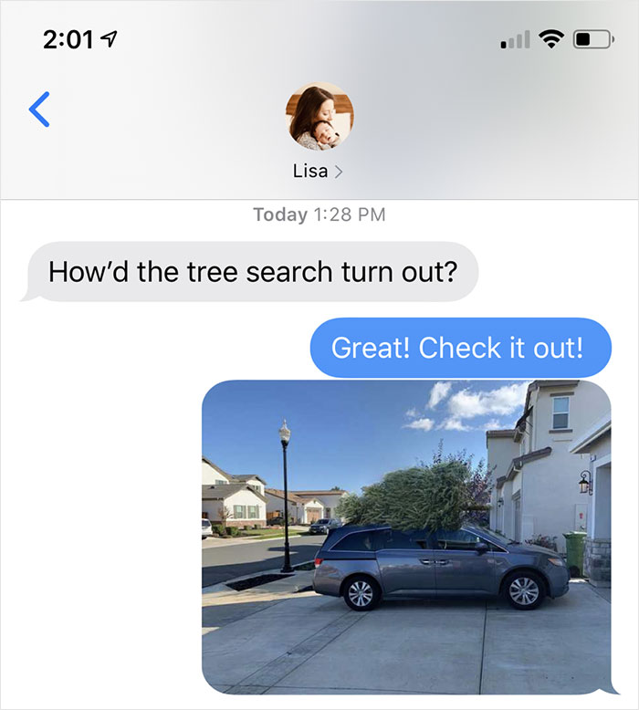 dad trolling wife photoshopped christmas tree