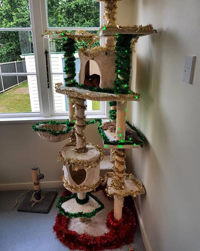 diy holiday trees cat house