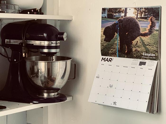 dog pooping calendar hung on wall