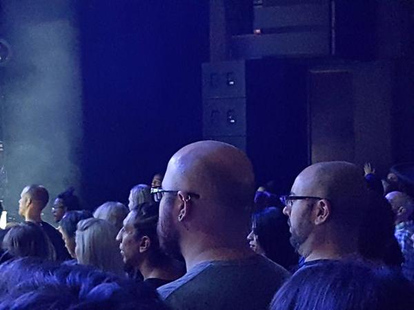 eyeglass wearing skinheads