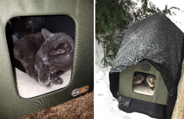 for kitties that love to sleep outside