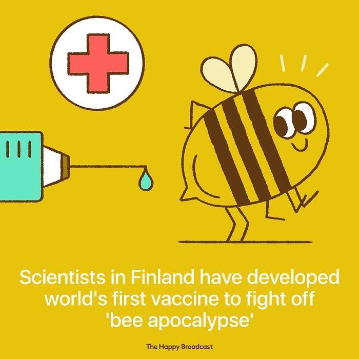 mauro gatti illustrations finland bee vaccine