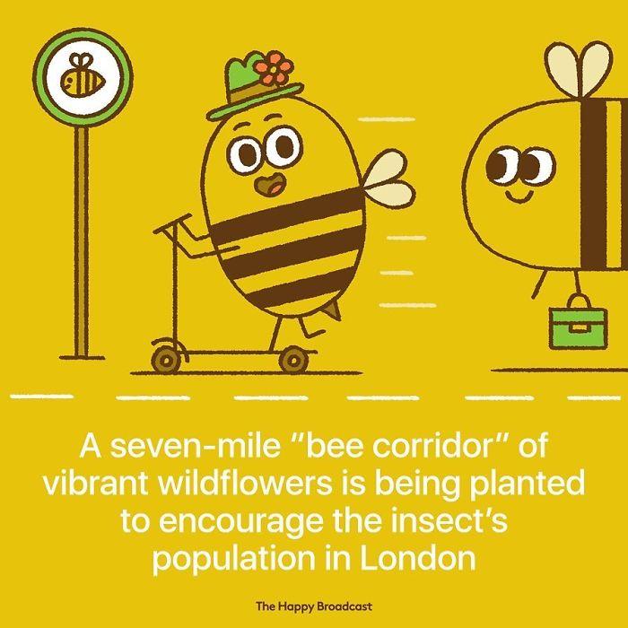 mauro gatti illustrations london bee corridor