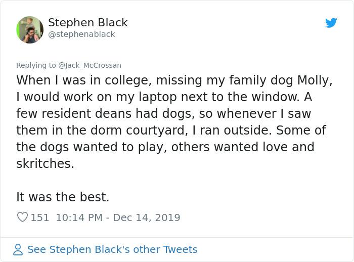 missing my family dog