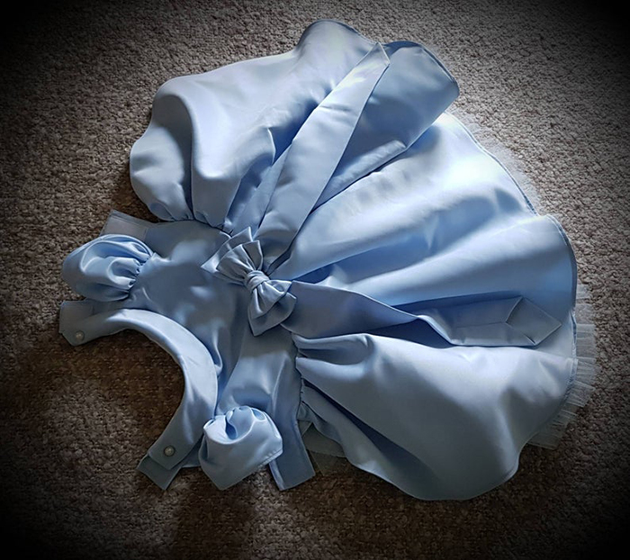 pale blue dog bridesmaid dress