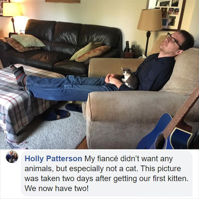 people who did not want cats and dogs stories holly