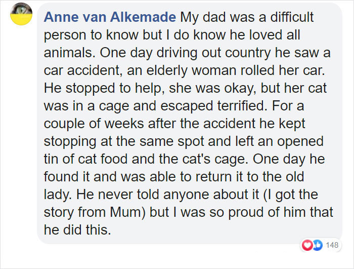 people who did not want pets stories anne