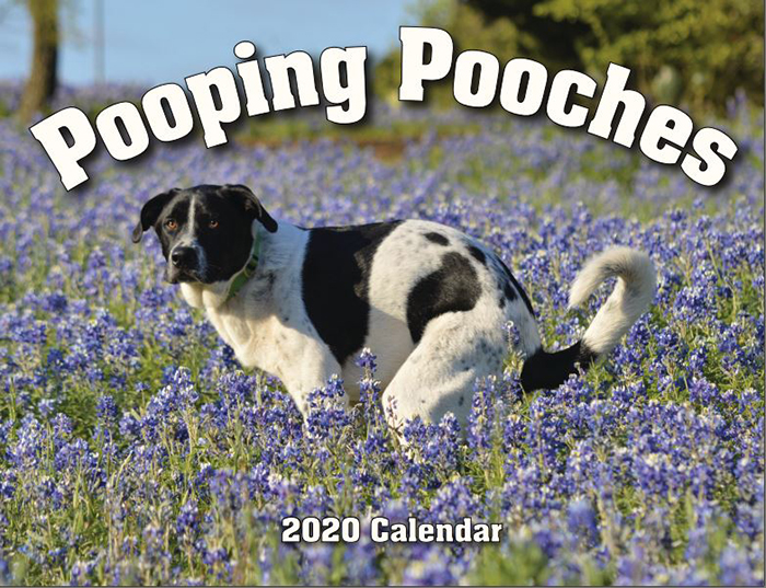 pooping pooches calendar cover