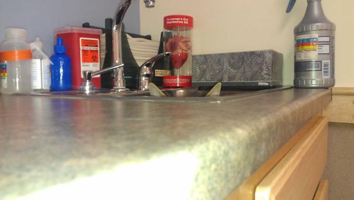 sneaky hiding kitchen sink