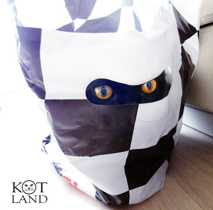 sneaky hiding kitty plastic bag mask