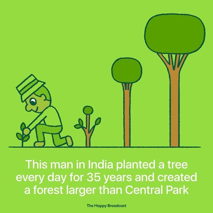 the happy broadcast india planted trees