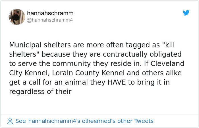 tweet 2 Animal Shelter