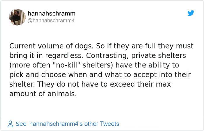 Animal Shelter Tweet 3