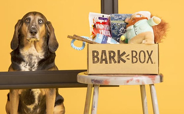 vincent van gogh barkbox package