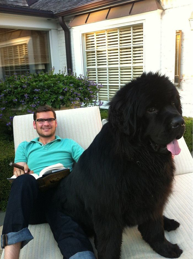 150 pound lapdog