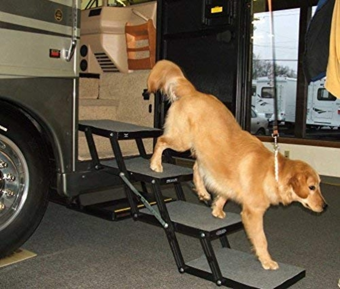 Brown Dog Getting Off a Van through 3-step Foldable Dog Stairs