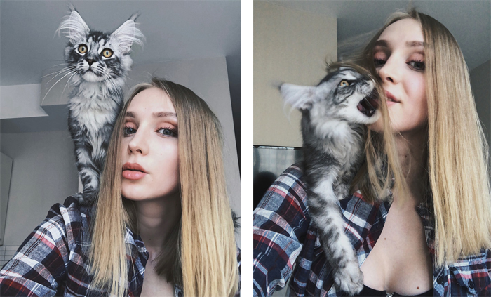 Lady with Her Kitten on Her Shoulder