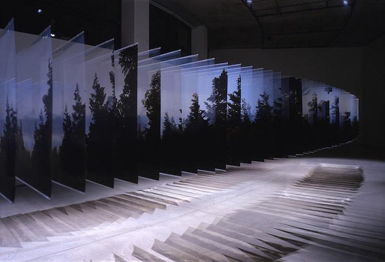 Nobuhiro Nakanishi Tree Layer Drawings