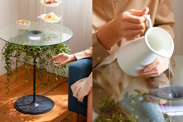 Oasis glass table