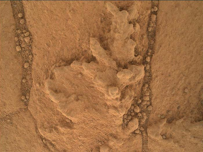 Resistant Features In Pahrump Hills Outcrop