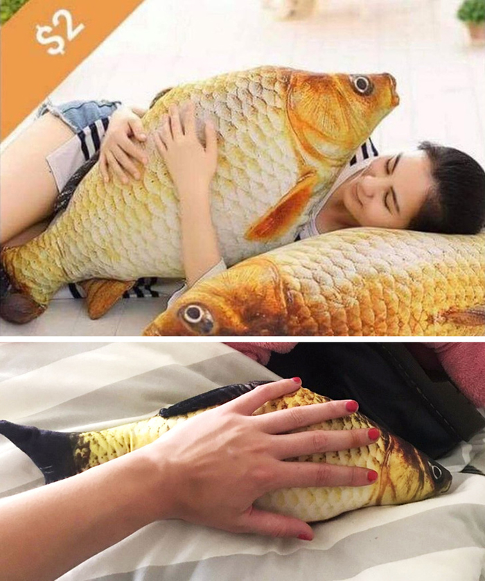 Shopping Disasters Fish Pillow Product Photo Versus Actual Product