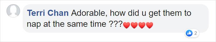 Terri Chan Facebook Comment