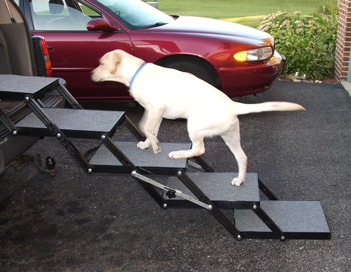 White Dog Getting Into a Car through 5-step Foldable Dog Stairs